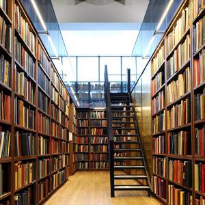 Библиотеки Старой Майны